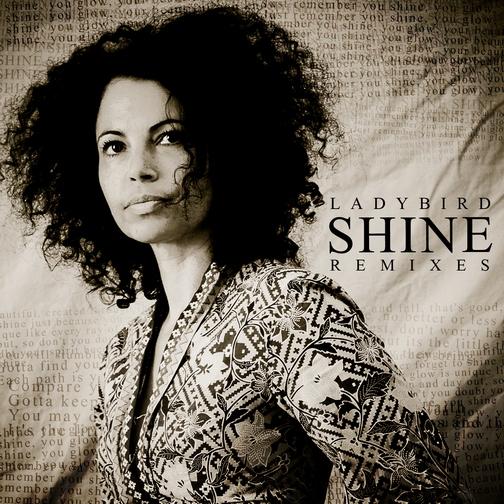 Ladybird - Shine EP (Remixes) - Peng